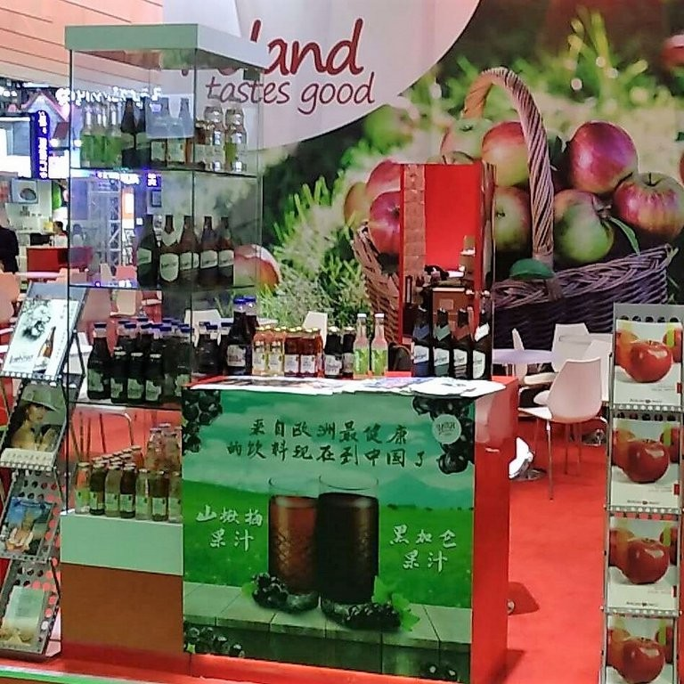 China International Import Expo 2018